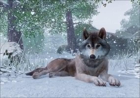 Planet Zoo Screenshot 2